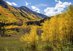 Fall beauty. Maroon Bells, Elk Range, Colorado. (pedro lastra) Tags: autumn fall colors sony ii a77 sonya77ii