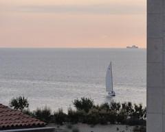 Marseille - A l'entre du Vieux Port (Hlne_D) Tags: sunset sea mer france port harbor boat marseille paca aviary provence bateau mediterraneansea vieuxport voilier coucherdesoleil mditerrane sailingboat bouchesdurhne mermditerrane provencealpesctedazur hlned
