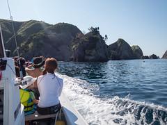 IMG_0030.jpg (kenichi0213) Tags: japan snorkeling izu  minamiizu     nakagi hirizobeach