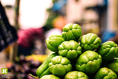 "Chayote • <a style=""font-size:0.8em;"" href=""http://www.flickr.com/photos/86056586@N00/15316140076/"" target=""_blank"">View on Flickr</a>"