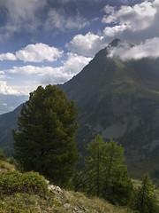 006 - la Becca di Nona (TFRARUG) Tags: alps alpine alpi beccadinona emilius