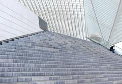 Gare Liege - Guillemins (Werner Schnell Images (2.stream)) Tags: santiago station stairs gare bahnhof treppe explore calatrava liege luik ws lüttich explored guillemins