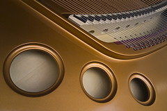 No. 9 of 32 (N808PV) Tags: music piano 7 beethoven special limited edition find bösendorfer oppo