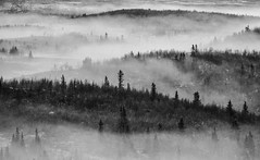 Landscape in fog (geirrisberg) Tags: europa fjell fjellrygg geografistedsnavn høst landskap land nonaturfotover07052009naturfokus nordeuropa norge november oppland tid tåke vær yddin årstid østlandet øystreslidre gjøvik norway