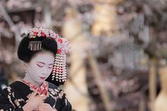 DSC_5668-1 (kikukudo) Tags: 梅花祭野点大茶湯 北野天満宮 上七軒 舞妓 kyoto maikosan