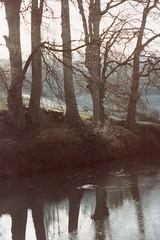 Kennet & Avon frost (OhDark30) Tags: pentax me 35mm film 90s kennetavon canal water ice reflection frost trees ripples bank fields winter frosty lowsun