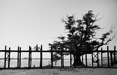 (cherco) Tags: mujer myanmar woman bike bicicleta blackandwhite blancoynegro bridge puente tree arbol wood cross lake lago lonely solitario solitary loneliness alone composition composicion canon silueta