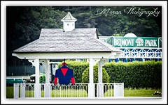 Tonalist's Colors in the Belmont Infield (EASY GOER) Tags: horses horse ny sports racetrack race canon track competition racing 7d athletes races sporting 56 thoroughbred equine thoroughbreds belmontpark 400mm