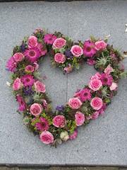 heart (streamer020nl) Tags: flowers roses heart blumen coeur hart rozen herz bloemen 2014