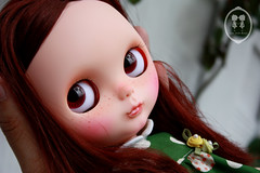 My Custom Commission  Blythe Doll.