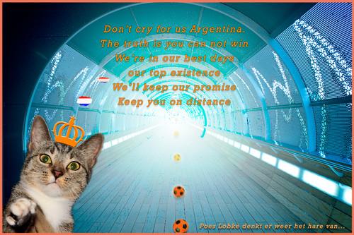 WK Oranje: Poes Lobke voorspelt