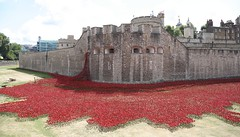 Sea of Poppies - Tower of London (dorsetbays) Tags: red england sculpture flower london art crimson ceramic blood memorial poem poppy poppies remembrance moat toweroflondon towerhill worldwar1 armisticeday armistice centenary seaofred seaofblood paulcummins toweroflondonmoat firstworldwarcentenary worldwar1commemoration worldwar1centenary bloodsweptlandsandseasofred 11thnovember2014 ceramicpoppies ceramicpoppy firstworldwarcommemoration toweroflondonremembers bloodsweptlands
