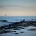 one perfect day (nosha) Tags: ocean sea usa beach beautiful beauty newjersey nj og shore asbury jerseyshore ulysses oceangrove asburyparknj oneperfectday