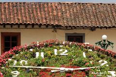 Reloj Floral - Zacatlán - Puebla - México (Luis Enrique Gómez Sánchez) Tags: méxico mexique messico メキシコ мексика μεξικό luisenriquegómezsánchez μεξικ canont3i