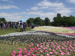 The Big IF, 8 June 2013 (roger.w800) Tags: park flowers london protest hunger hydepark paperflowers londonpark peaceprotest bigif feedtheworld antihunger parkinacity