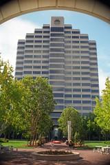 Metro Plaza Tower (Riex) Tags: california building film architecture zeiss skyscraper 35mm iso100 kodak highrise vignetting ikon metroplaza fostercity cpl batiment californie ektar carlzeiss contaflex gratteciel f32 protessar