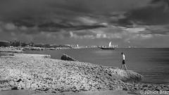 Walker of Aruba (Junotphotography) Tags: blackandwhite white black island nikon aruba junior caribbean braz caribe junot d7000 nikond7000 junotphotography