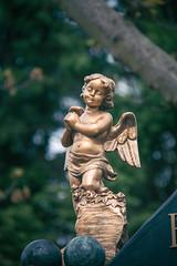 El ngel (Juanedc) Tags: sculpture espaa statue angel spain cementerio escultura alava estatua basque euskadi basquecountry paisvasco vitoria gasteiz cementery vitoriagasteiz pasvasco vascos camposanto