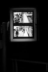 Project 365: #246 - Me Watching Me (Self-Portrait) (daviwie) Tags: vienna wien street camera portrait urban bw white selfportrait david black austria blackwhite sterreich surveillance streetphotography cctv portrt oesterreich project365 wietstruk
