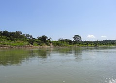 Usumacinta River DSC02043Pr (jvpowell) Tags: mexico guatemala usumacintariver