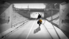 End of Summer (andzwe) Tags: light shadow copyright woman bike hoop bag lumix hope grey