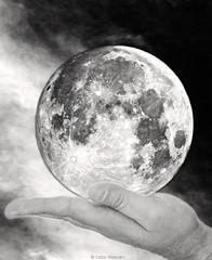 Reaching for the moon (salar hassani) Tags: moon for goal hand reaching dream imagine salar hassani reachingforthemoon visoin