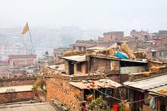 India_0688