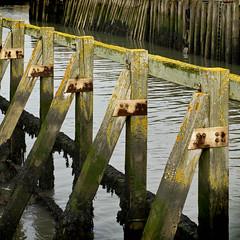 Sunlit Harbourside (Carolbreeze99) Tags: bridport westbay dorset broadchurch harbour piles harbourside lichen seaweed algae repetition sun goldenhour water