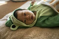 The Baby Boss |  (francisling) Tags: life zeiss 35mm t hokkaido sony cybershot ryokan   shiretoko sonnar   utoro rx1  dscrx1