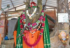 Gaea Road-Shrine (Shrimaitreya) Tags: india colors religion traditions indians hindu hinduism bharat southasia incredibleindia streetshrine hindusthan