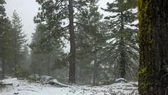 2012-01-19_10-24-31_943