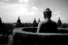 buddha view 2