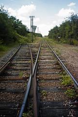 SDHF (nikleitz2009) Tags: leica trains urbex summaron leitz leicam8 sdhf saintdenisdelhotel nikleitz