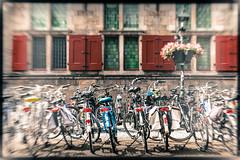 Bicycle chaos (glukorizon) Tags: plant flower window bicycle facade movement blind bokeh cityhall many nederland delft lamppost frame townhall flowerpot vignetting centrum faade luik stadhuis raam fiets gemeentehuis bloem beweging odc zuidholland shading gevel ruit lantaarnpaal kader hss veel bloempot windowshutter odc1 zonwering vignettering ourdailychallenge sliderssunday