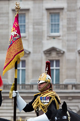 The Cavalry Colour (Mikepaws) Tags: park uk greatbritain england london westminster army unitedkingdom flag military capital ceremony royal parade celebration event historical annual procession cavalry 2014 ceremonial troopingthecolour unitedkingdomofgreatbritain householdcalvary bluesroyals