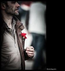 Lisboa 25 abril - Revoluo dos Cravos (magicoda) Tags: street trip red people white man colour detail portugal colors see nikon colours colore foto lisboa candid curioso persone uomo voyeur passion fotografia dslr rosso giro lisbona portogallo passione dettaglio 2014 d300 revoluo 25abril cravos vedere garofano garofani streetphotografy magicoda davidemaggi maggidavide