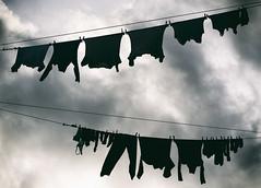 Divergent (_Massimo_) Tags: italy italia liguria genoa genova laundry clothesline bucato pannistesi massimostrazzeri ziomamo