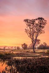 A Mary Valley Morning (Matthew Post) Tags: winter orange creek sunrise canon landscape tamron 6d cooloola gympie 2875mm kandanga maryvalley matthewpost kybong