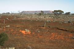 Flinders Ranges (Melody Ayres-Griffiths) Tags: australia outback southaustralia flindersranges portaugusta