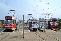 150 jaar tram (tramlijn30) Tags: scheveningen tram denhaag 150 1302 museumtram p1 jaar jubileum pcc htm 3001 3013 gtl zwartepad tramlijn30