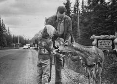 Welcome To Banff (vintage) (Sherlock77 (James)) Tags: people man child deer alberta oldphoto banff foundphoto