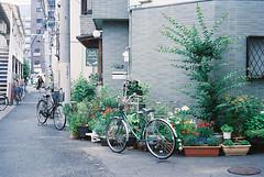 (yuwy*) Tags: japan natura fujifilm osaka classica