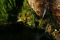Fuente de Pea Negra , Piornal (Ral Casares) Tags: agua natural fuente negra pea tela extremadura caceres piornal