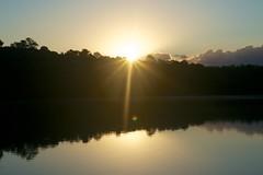 Trap Pond Sunrise (kylewagaman) Tags: statepark park camping lake nature sunrise pond lensflare wilderness trappond