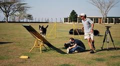 DSC_0110 (Clube de Cãompo Hotel Fazenda para Cães) Tags: votorantim estimacão hotelfazendaparacães clubedecãompohotelfazendaparacães