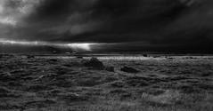 Breakthrough (Marshall Ward) Tags: landscape mono iceland farm 2014 stormyskies clearingstorm stormapproaching nikond800 afszoomnikkor2470mmf28ged marshallward stormsclearing