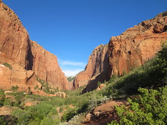Zion National Park: Kolob Canyon (John Steedman) Tags: usa america utah unitedstates unitedstatesofamerica northamerica zionnationalpark estadosunidos 美國 kolobcanyon norteamérica nordamerika amériquedunord américadelnorte 北アメリカ カリフォルニア州 アメリカ合衆国 加利福尼亚州 北美洲