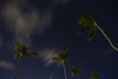 Dominicaanse Republiek (Mark Sekuur) Tags: sea beach night clouds strand nacht wolken zee palmtree puntacana palmboom dominicaanserepubliek bávaro caribisch laaltagracia azuurblauw pwpartlycloudy bã¡varo