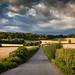 road after a storm