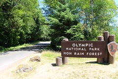 Entering Hoh Rain Forest (daveynin) Tags: road sign nps gateway welcome olympic deaftalent deafoutsidetalent deafoutdoortalent